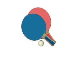 Tradiční předsilvestrovské turnaje ve stolním tenisu neregistrovaných a dětí